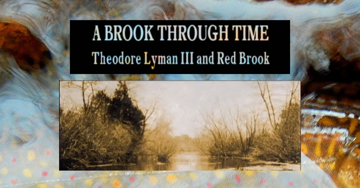 A Brook Through TIme DVD by Charles Lyman