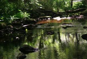 Westport_River